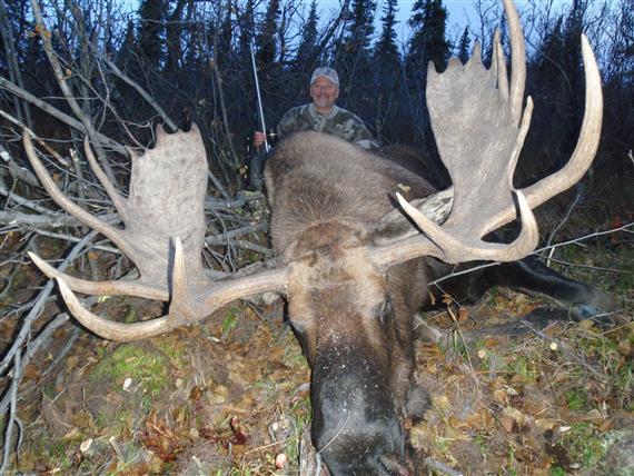 biggest moose - photo #15