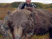 United States - Alaska - Brown Bear