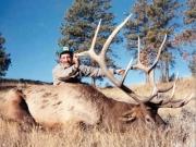 United States - Montana - Elk