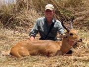 Bohor Reedbuck in Uganda
