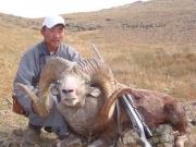 Trophy Hangai Argali Sheep Hunting in Mongolia