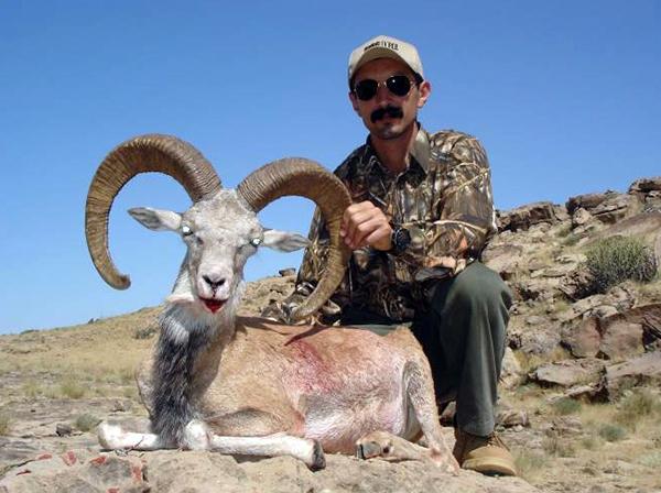 Trophy Punjab Urial Hunting in Pakistan