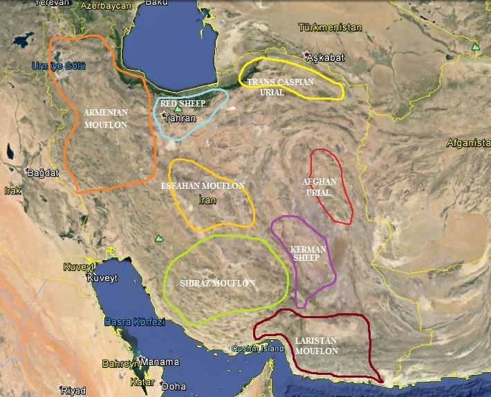 iran-hunting-areas-map