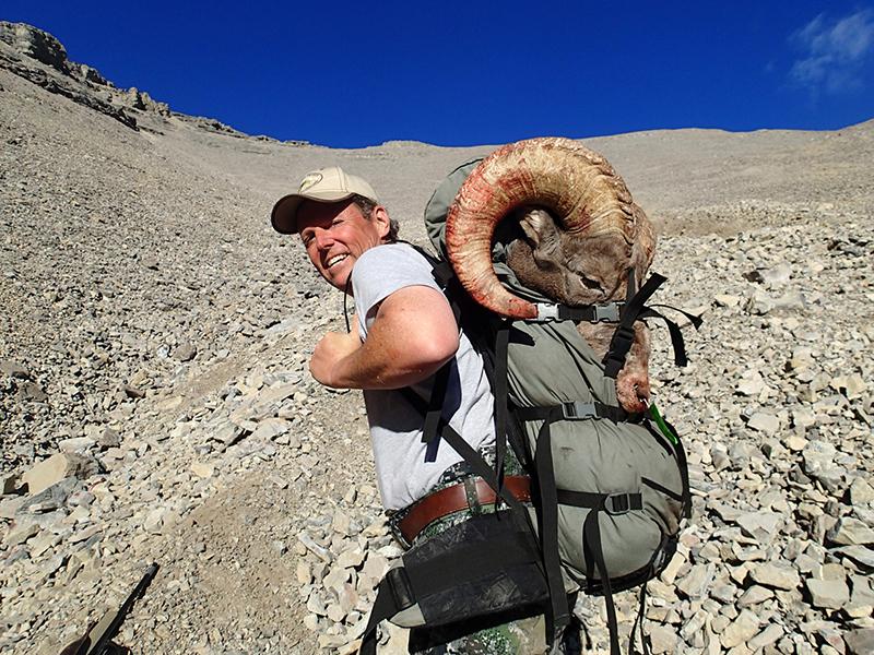 mark u2019s trophy bighorn sheep hunt in alberta  canada the