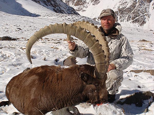 Trophy Mid-Asian Ibex Hunting in Tajikistan